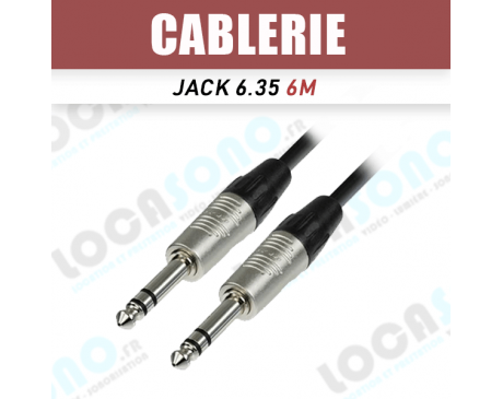 Location câble Jack 6.35 6 mètres