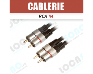 Câble double RCA 1m